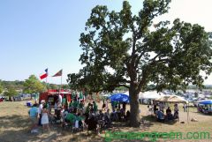 Tailgating under Big Tree
