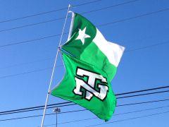 Mean Green battle flags