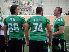 Shaw, Feldt and Orr