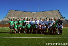 GoMeanGreen Bowl IX In The Apogee Wing