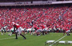 UNT D Lines Up against Georgia