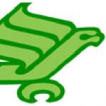 Mean Green Matt
