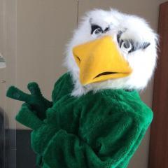 Pavlovs Eagle