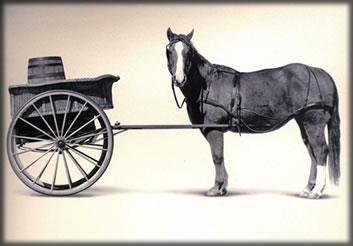 cart-before-the-horse.jpg.fee8ea86eeb10df18b91019156f957c5.jpg