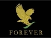 forevereagle