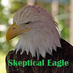 Skeptical Eagle
