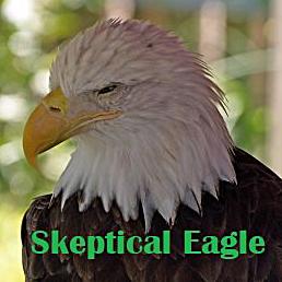 Skeptical Eagle